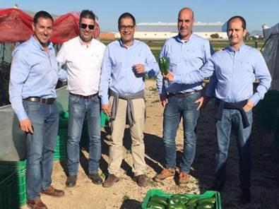 pelemix spain team