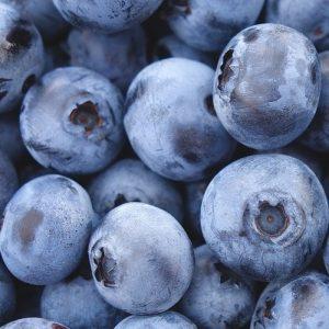 coir for blueberries
